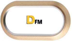 dfm.ru